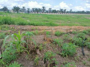 Dry Land with Governors Consent, Pearl Garden Estate, Sangotedo, Ajah, Lagos, Land for Sale