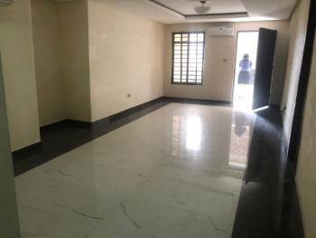 Newly Built 2 Bedrooms Apartment, Mojisola Onikoyi Estate, Ikoyi, Lagos, Flat / Apartment for Sale