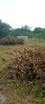60 By 120 Full Plot  Dry Land, Elerangbe B/s, Ibeju Lekki, Lagos, Residential Land for Sale