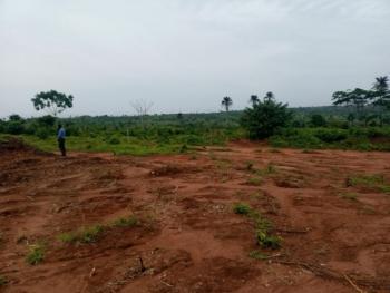 Royal Villas, Obaekwu-akwusi, Idumu Abu Quarters, Issele Azagba, Aniocha South, Delta, Mixed-use Land for Sale