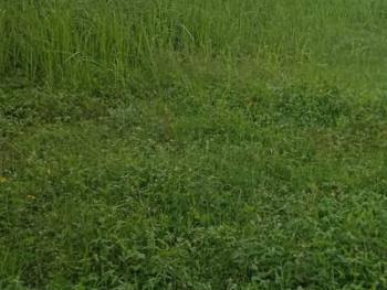 Plot of Land Measuring 480sqm, Phase 2, Osborne, Ikoyi, Lagos, Residential Land for Sale