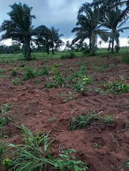 Farm Land Available, Shewu, Abeokuta South, Ogun, Commercial Land for Sale