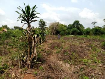 2 Plots of Dry Land, Agbowa, Ikorodu, Lagos, Mixed-use Land for Sale