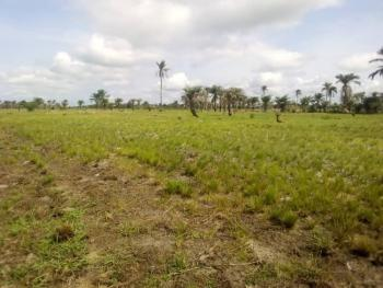 30000sqm Joint Venture, Victoria Island (vi), Lagos, Mixed-use Land Joint Venture