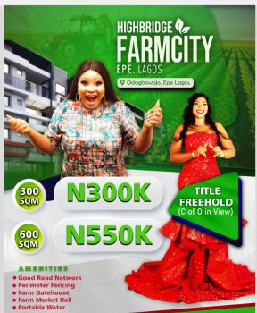 Affordable Farm Land with Free Hold, Odogbawojo Epe, Epe, Lagos, Commercial Land for Sale