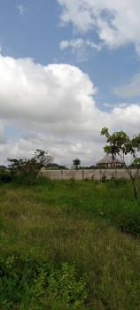 a Plot of Government Land Allocation, Off Port Harcourt Road, Avu, Owerri West, Imo, Land for Sale