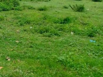 Partitioned 1,000sqm Land, Parkview, Ikoyi, Lagos, Mixed-use Land for Sale
