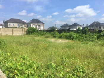Dry Land with C of O, By Pearl Garden Estate, Sangotedo, Ajah, Lagos, Land for Sale