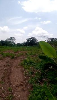 Give Away Acres & Massive Plots of Land on The Tarred Road, Akure, Ondo, Mixed-use Land for Sale