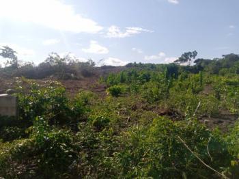 Land Measuring 650sqms with Good Title in a Nice Estate, Diamond Estate, Sangotedo, Ajah, Lagos, Residential Land for Sale