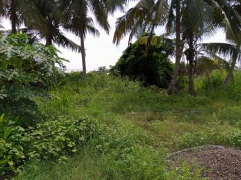800sqms of Land Available in a Well Secured Estate, Eden Garden Estate, Ajah, Lagos, Residential Land for Sale