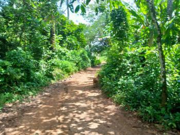 Mixed-use Strategic 1.2 Acres of Land Near The Tarred Road, Isokun Village, Near Ilaji Resort Off Akanran Road, Akanran, Ona Ara, Oyo, Mixed-use Land for Sale