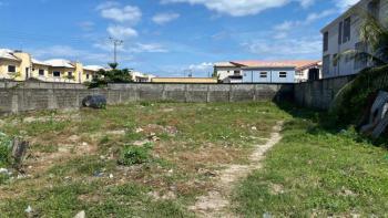 1001 Square Metres Land Facing Express, Facing Express, Ikate Elegushi, Lekki, Lagos, Commercial Land for Sale