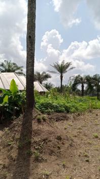 Strategically Located Plots of Dry Land in a Built Up Area, Ikot Otu, Opposite Okon Iseh & Sons  Filling Station, Ikot Ekpene, Akwa Ibom, Mixed-use Land for Sale