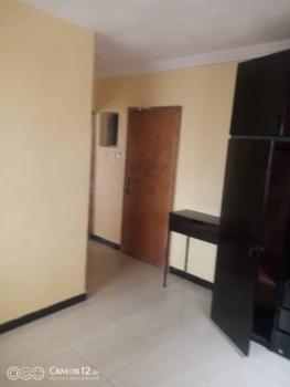 Super Clean Room & Parlour, Chevron Alternative, Lekki, Lagos, Mini Flat for Rent