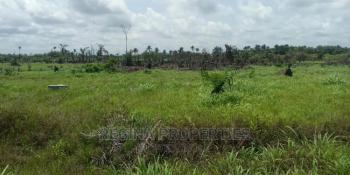 Fenced 12 Plots of Land, Trans Amadi Industrial Layout, Port Harcourt, Rivers, Industrial Land for Sale