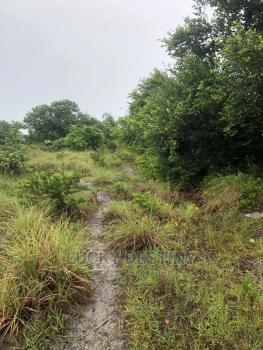 6.9 Hectares, By National Assembly Quarters Opposite Cosgrove Estate, Dape, Abuja, Commercial Land for Sale
