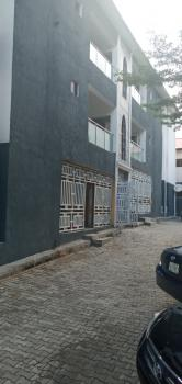 Virtually New & Well Finished 2 Bedroom Flat, Wuse 2, Abuja, Flat / Apartment for Rent