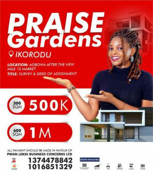 Affordable Plots of Land, Praise Gardens Estate, After The New Mile 12 Market, Agbowa, Ikorodu, Lagos, Mixed-use Land for Sale