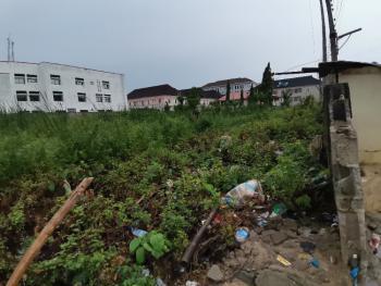 5300sqm Plot of Land, Agungi, Lekki, Lagos, Residential Land for Sale