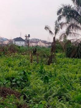 a Plot of Land, Ogudu Garden Valley Gra, Gra, Ogudu, Lagos, Residential Land for Sale