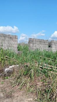 2 Perfect Plots of Land, Off Port Harcourt  Road, Avu, Owerri West, Imo, Land for Sale