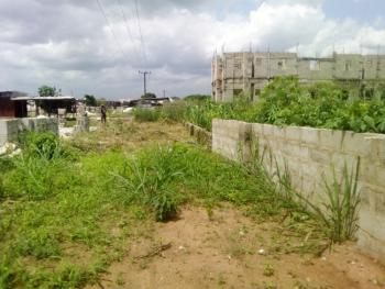 2 Standard Plots of Land with Massive Green Verge, Port Harcourt Road Off Avu Junction, Owerri Municipal, Imo, Mixed-use Land for Sale