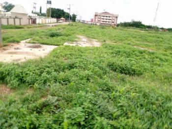 Land, Along Mabushi-kado Expressway, Jabi, Abuja, Mixed-use Land for Sale