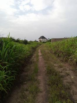 a Cheap Solid Plot of Land, Off Port Harcourt Road, Avu, Owerri West, Imo, Land for Sale