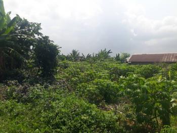 an Open Land, Stadium Road, Uyo, Akwa Ibom, Residential Land for Sale