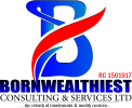 Bornwealthiest Consulting And Services Limited