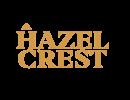 Hazel Crest Property